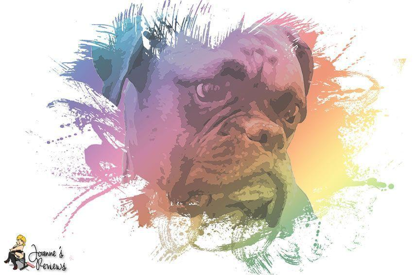 Digitale Kunst - Die Bulldogge