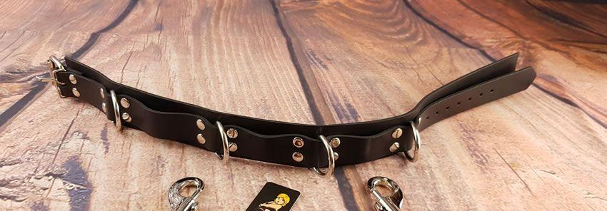 Image showing the Honour HNRX Rubber Collar with 4 D Rings