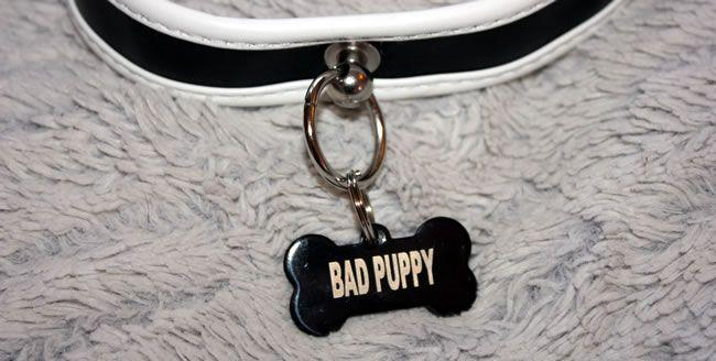 The BAD PUPPY dog tag steals the limelight and look fantastic