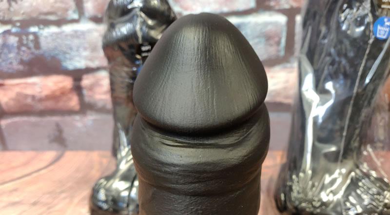エセックスギーザーの亀頭を示す画像