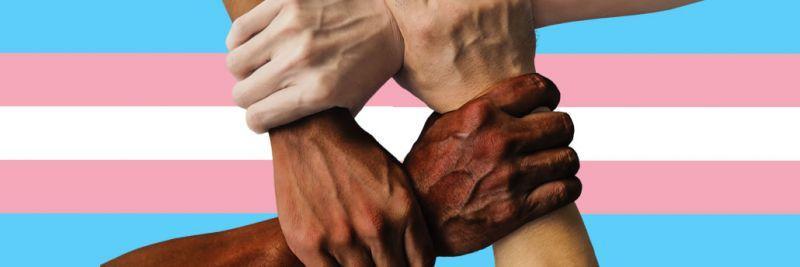 مجتمع المدونات الجنسية وترانسفوبيا